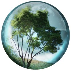 nature-buttons-2-1163558