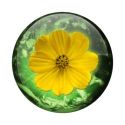nature-buttons-7-1163440